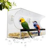 Observación de pájaros entretenida del alimentador claro del pájaro por dentro de su hogar
