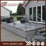 Baluster балюстрады Railing лестницы крылечку нержавеющей стали (SJ-H4109)