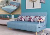[150كم] حديثة ركب أريكة [كم] سرير تصميم مصنع [ديركت سل]