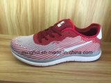 الصين مصنع إنتاج يبيطر رياضة [رونّينغ شو] نمط أحذية