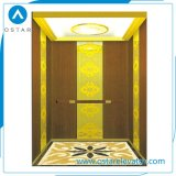 Elevatore domestico conveniente e sicuro per il passeggero residenziale usato
