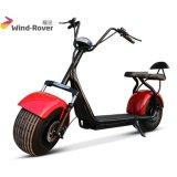 Motocicleta eléctrica de la movilidad de los Cocos de la ciudad del neumático gordo eléctrico de la vespa