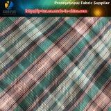 Polyester&Nylon 털실에 의하여 염색되는 검사 주름 직물