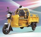 Triciclo elétrico elétrico da carga de Trike