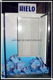 420L Merchandiser van het ijs voor het Openlucht en Binnen Gebruiken