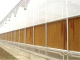 Стена пусковой площадки фермы коровы птицефермы дома цыпленка охлаждая охлаждая