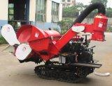 Piccola mietitrice del macchinario di raccolta dell'azienda agricola per il raccolto del riso del frumento