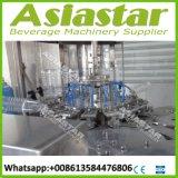Terminar la máquina que capsula de relleno automática del agua mineral de la botella del animal doméstico