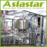 vollautomatischer Flaschen-Mineralwasser-Füllmaschine-Preis des Haustier-3000bph
