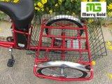 24inch Driewieler van de Lading van het Wiel van de band de Oudere Elektrische 250W