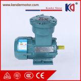 Qualität Ex-Beweis 3-phasiger Elektromotor
