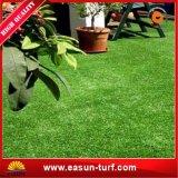 يرتّب عشب عشب اصطناعيّة لأنّ وقت فراغ لون عشب اصطناعيّة