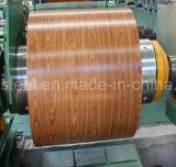 최신 판매 색깔은 아프리카에 있는 강철판 Prepainted 직류 전기를 통한 강철 코일을 입혔다