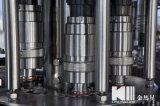 Macchina dell'impianto di imbottigliamento delle acque in bottiglia di serie del Cgf