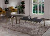Nuovo tavolino da salotto di vetro Tempered di disegno 2017 con il blocco per grafici del metallo