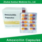 Embalagem de papelão antibiótico de cápsula