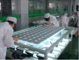 アルミ合金フレームのモノラル太陽電池パネル320Wが付いている太陽電池パネル
