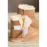 薄いゴム製Outsoleの対の表面羊皮の幼児の靴