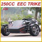 2017 más nuevo de la motocicleta Trike para Adultos