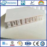 Panneau d'âme en nid d'abeilles des plastiques renforcés par fibre de verre pp pour Vehicle&#160 ; Construction