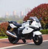 전기 기관자전차가 최신 판매 Childern 모터 자전거에 의하여 농담을 한다