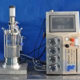 fermentador 5L de vidro agitado mecânico