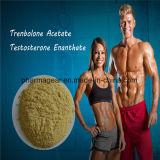 Het hoogste het Ophopen van Anadrol Deca Durabolin van de Acetaat van Trenbolone van Steroïden Poeder van de Cyclus