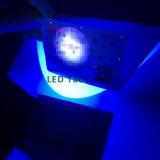 La torcia elettrica UV usa l'indicatore luminoso blu