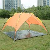 Prevenção da doença que caminha a barraca de acampamento para atividades ao ar livre