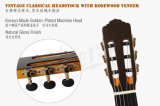 Полностью твердой классической Fretboard поднятое гитарой и одиночная Port модель