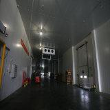 열 절연제 Pur/PIR 의 저온 저장을%s PU 샌드위치 위원회