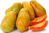 Jugo de papaya Polvo para Bebidas y Alimentos Sabor