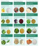 Extracto 100% natural de algas marinhas Fucoxantina 5% ~ 20%, Fucoidan 85%