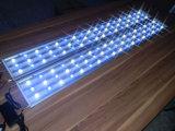 1.5BS203 LED aquário luz