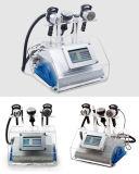 5 dans 1 corps de radiofréquence de Mutipolar rf de cavitation de l'ultrason 40k bio amincissant la grosse machine de beauté de perte de poids de gel