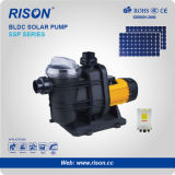 C.C. Surface Swimming Pool Solar Pump con el CE Certified
