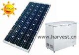 12V 24V Solargefriermaschine für Bereich mit häufig Stromausfällen (HSFR-238L)