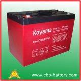 batería profunda del AGM del ciclo de 12V 100ah para solar/la UPS