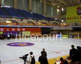 Carrelages de cour de volleyball de Futsal de basket-ball d'événement sportif, mini plancher de cour de Futsal