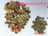 Vsee 녹색 커피 콩 색깔 분류하는 사람, 커피 분리기 말레이지아, 대만