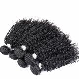 최상 비꼬인 컬 머리는 처리되지 않는 사람의 모발 브라질인 머리를 잇는다