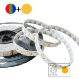 LED5050 strook RGB+W 72LEDs/M voor OpenluchtToepassing
