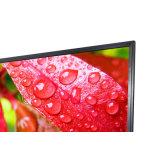 Pantalla táctil impermeable clasifiada educación del USB LED LCD