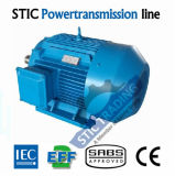 IEC Cast Iron Ie2 4pole High Efficiency AC Motor