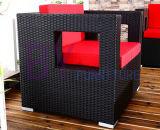 Jogo do sofá da mobília do Rattan do PE da forma