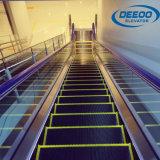 Wohnim Freien elektrische Haupthandlauf-Innenrolltreppe