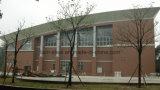 Het aangepaste Ontwerp van de Bundel van het Dak van het Staal voor Gymnasium, de Bouw van het Bureau, Winkelcomplex, Bibliotheek