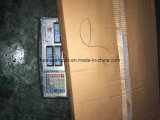 Seafrozen Fresh Mahi Mahi From中国(Coryphaenaのhippurus)