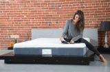 ホーム家具10インチの優秀なメモリ泡のマットレス