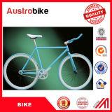 판매 고품질 강철 합금 알루미늄 26 인치 검정 판매를 위한 싸게 백색 색깔 조정 기어 자전거 조정 자전거